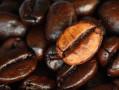 Protección mitocondrial gracias al kahweol, un dipterpeno del café